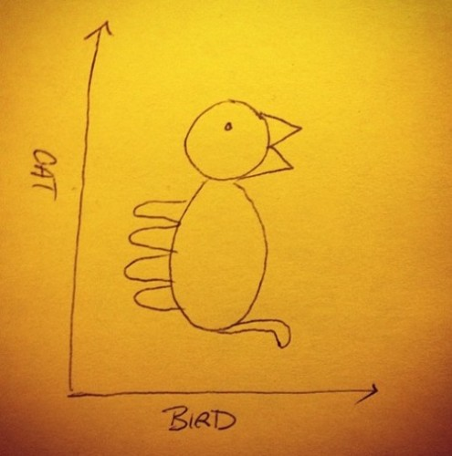 cat_vs_bird_chart