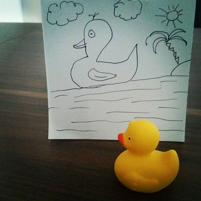 Duck dreams