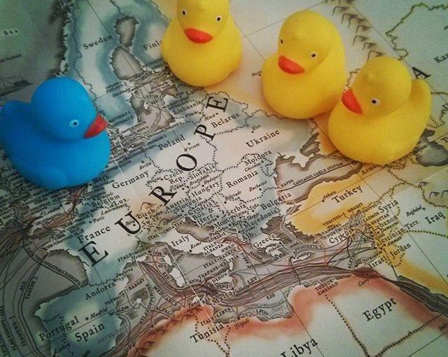 Studying Europe